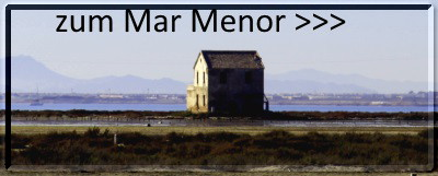 Mar Menor Link
